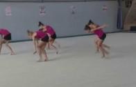 ДП по естетическа групова гимнастика