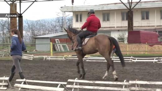 Квалификации за Държавно първенство по конен спорт се проведоха в Стара Загора