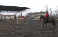 Състезание по конен спорт по случай Тодоровден