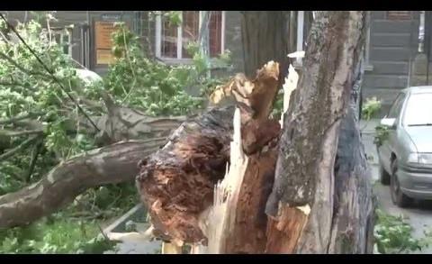 Редица сигнали заради силния вятър в Стара Загора