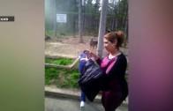 Наказват три лица за агресия в зоопарка?