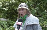 Как се отнасят старозагорци към бездомните животни?