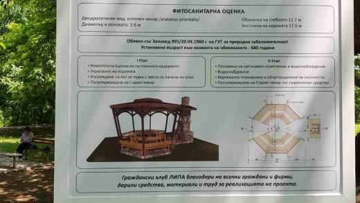 Нова табела на Стария чинар