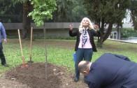 Гинка Станчева със своя звезда и липа в Стара Загора