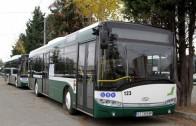 Автобус блъсна пешеходец на пешеходна пътека