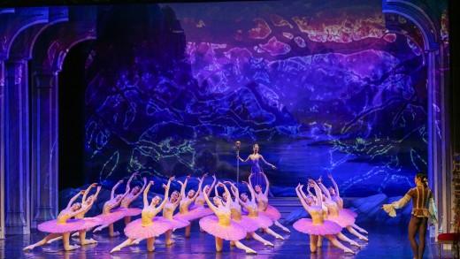 Държавна опера-Стара Загора, Спящата красавица план