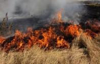 Стартира Седмицата на пожарна безопасност
