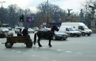 Каруците в Стара Загора се движат по определен маршрут и часови пояс