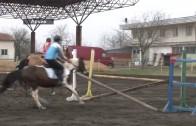 Турнир по конен спорт се проведе през уикенда в Стара Загора