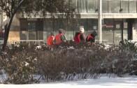 Близо 300 души почистваха ръчно снега