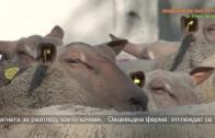 Земеделски институт – Стара Загора