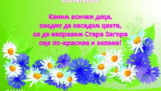 pfkana cvetia